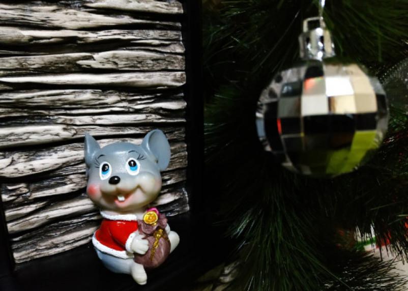 Год Белой Крысы подготовил для этого знака неприятные сюрпризы