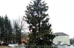 «После первой всем пофиг». Уродливая елка в Смоленской области вызвала дискуссию