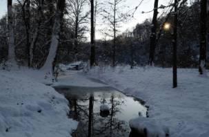 В Смоленске в реке Рачевка утонул мужчина