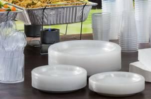 В Госдуме предложили убрать одноразовую посуду из общепита