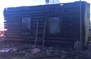 Остались без жилья. В Темкинском районе огонь полностью уничтожил дом