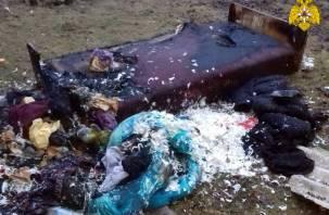 Подробности трагического пожара в Верхнеднепровском