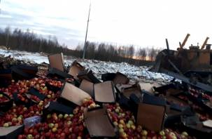 В Смоленской области раздавили 48 тонн груш и яблок