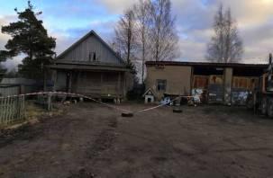 В следственном комитете заявили об инсценировке взрыва у дома водолаза