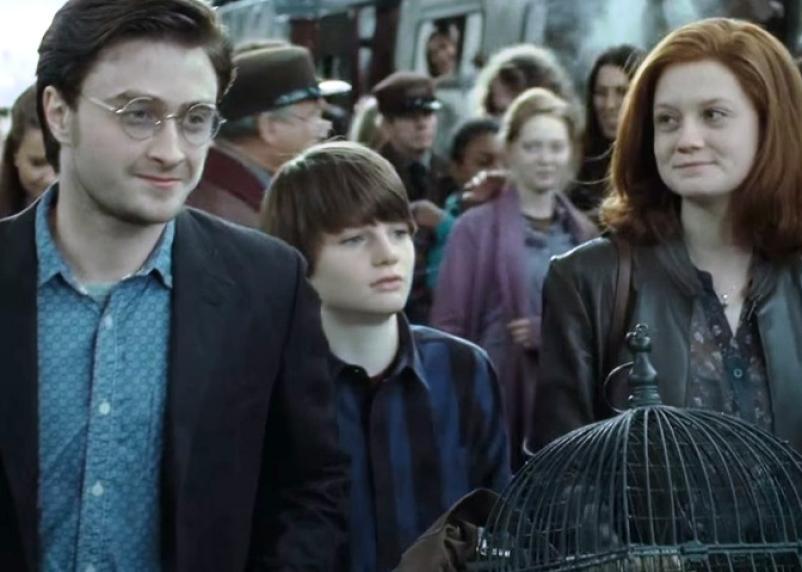 Готовится к выходу новый фильм о Гарри Поттере