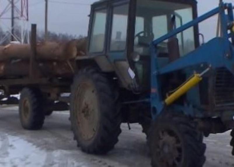 Вырубил на 800 тысяч рублей леса. Смолянину грозит тюремный срок