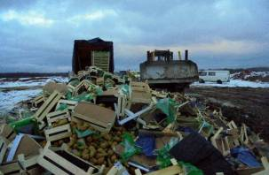 На смоленском полигоне уничтожили 57 тонн груш