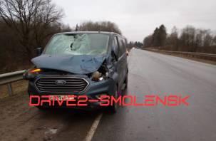 В Смоленском районе Форд сбил насмерть лося