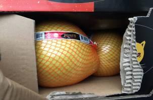 Смоленские пограничники пресекли ввоз 40 тонн фруктов из Китая