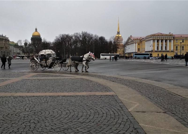 Власти Петербурга усилят проверки заведений общепита