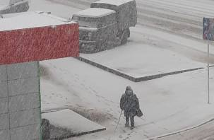 Сильный ветер, снег и гололед. В понедельник Смоленскую область заметет