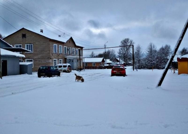 В понедельник смолян ожидает мокрый снег и гололёд