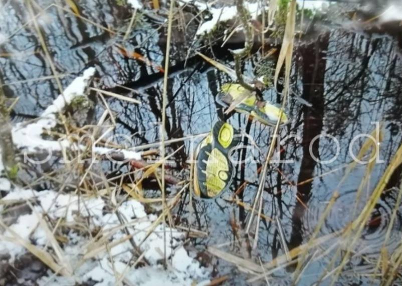 Опубликованы фото и видео с места обнаружения останков 16-летнего подростка