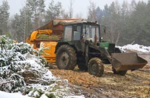 В Смоленске начали перерабатывать новогодние ёлки