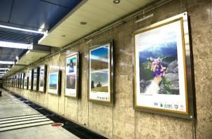 Работа смолянина вошла в экспозицию фотовыставки московской подземки