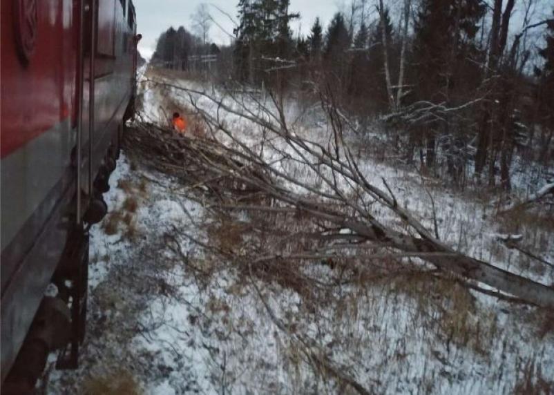 Пассажирский поезд сбил насмерть мужчину в Сафонове