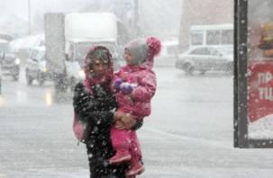На Смоленщине настоящей зимы пока не будет