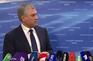 Спикер Госдумы не смог объяснить смысл референдума по изменению Конституции