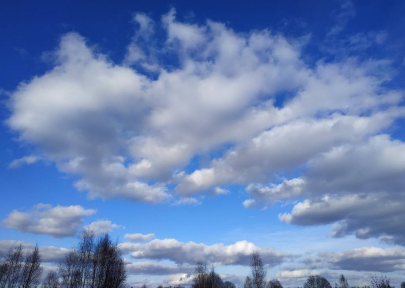 5 апреля в Смоленской области ожидается теплая погода