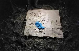 Дело Влада Бахова. Стали известны результаты экспертизы ДНК останков, найденных в демидовском лесу