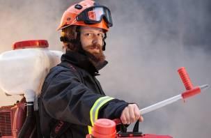 Смолянам предложат стать добровольными лесными пожарными