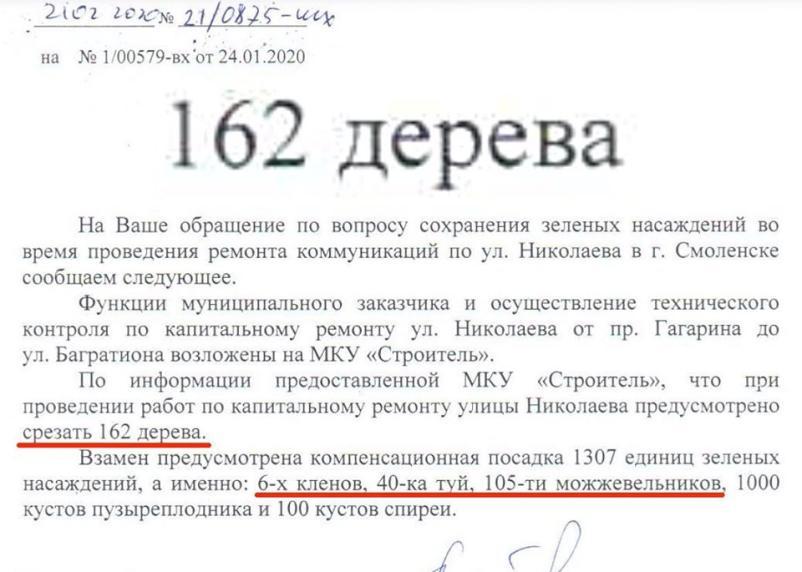 На Николаева вырубят 162 дерева — высадят 6 клёнов. Компенсация по-смоленски