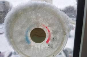Грета подкинет холода в Смоленскую область