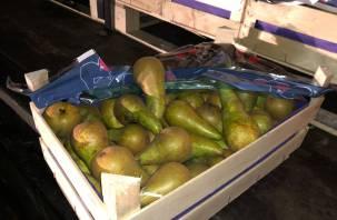 Пойман на Смоленщине. Белорус незаконно вез более 20 тонн груш