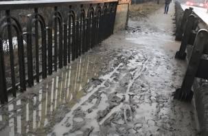 Смоляне жалуются на грязь на мосту