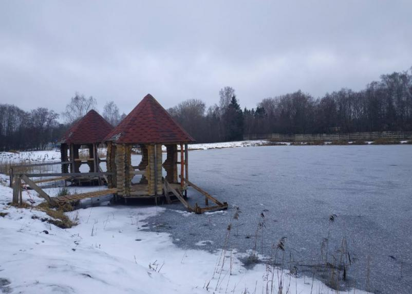 В Смоленске на озере Ключевое высадят сосны