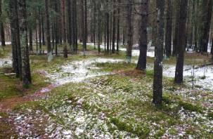 Разыскиваемый в Смоленской области белорус найден мертвым