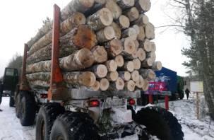 Из Дорогобужского района машинами вывозят лес