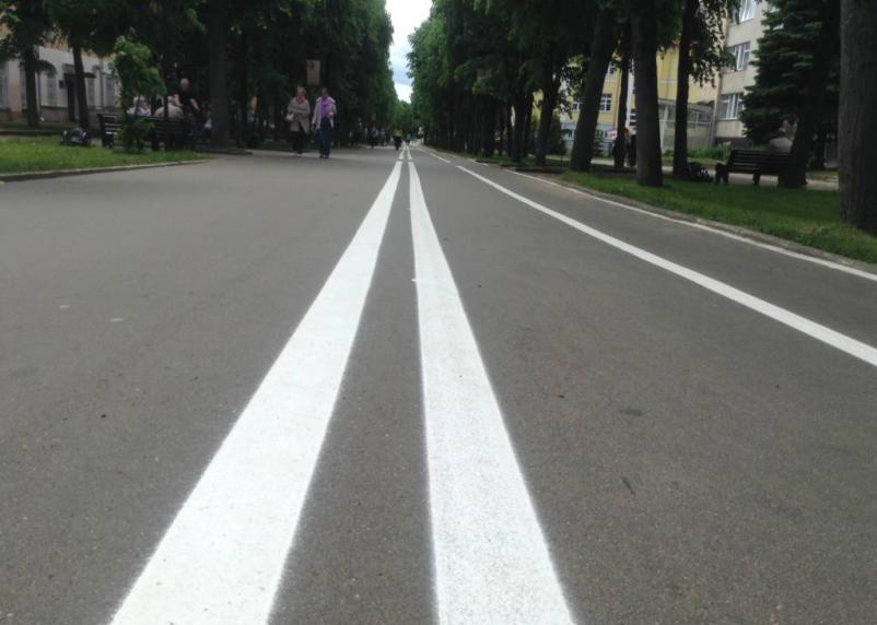 «Газелям» в Смоленской области дали зеленый свет