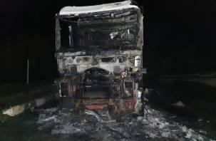 Водитель спал в кабине. Ночью в Смоленской области горела фура