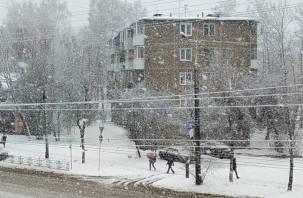 Ночью Смоленск накроет снег, а днём дождь