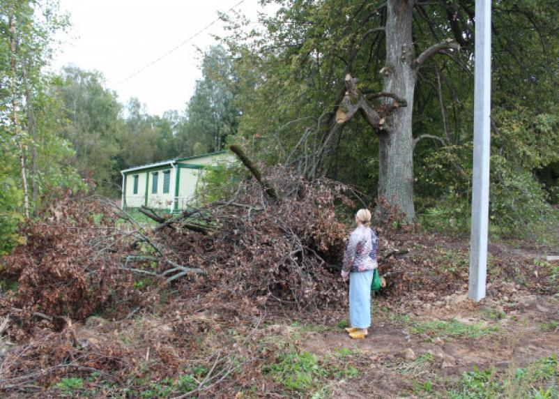 В Смоленской области планируют заменить 49 ФАПов