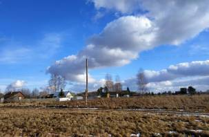 В Починковском районе поймали серийного дачного вора