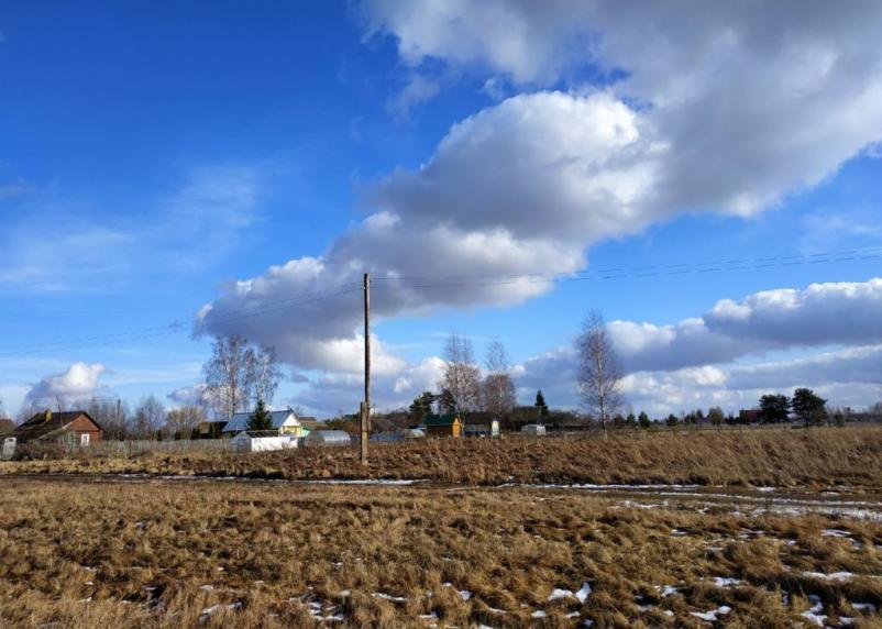 Заморозки из Смоленской области не уходят