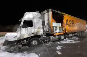В Смоленской области сгорела фура