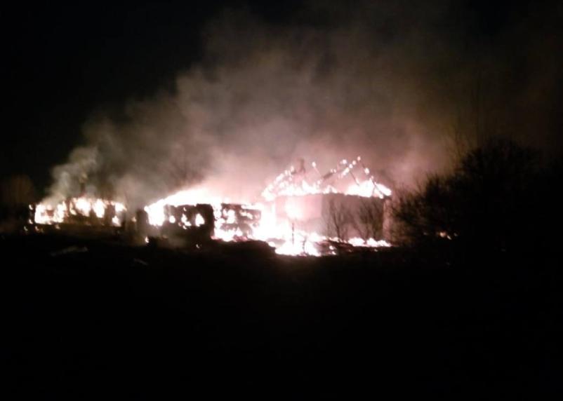 Горело пол деревни. Палы травы выжгли половину домов на улице в Сафоновском районе