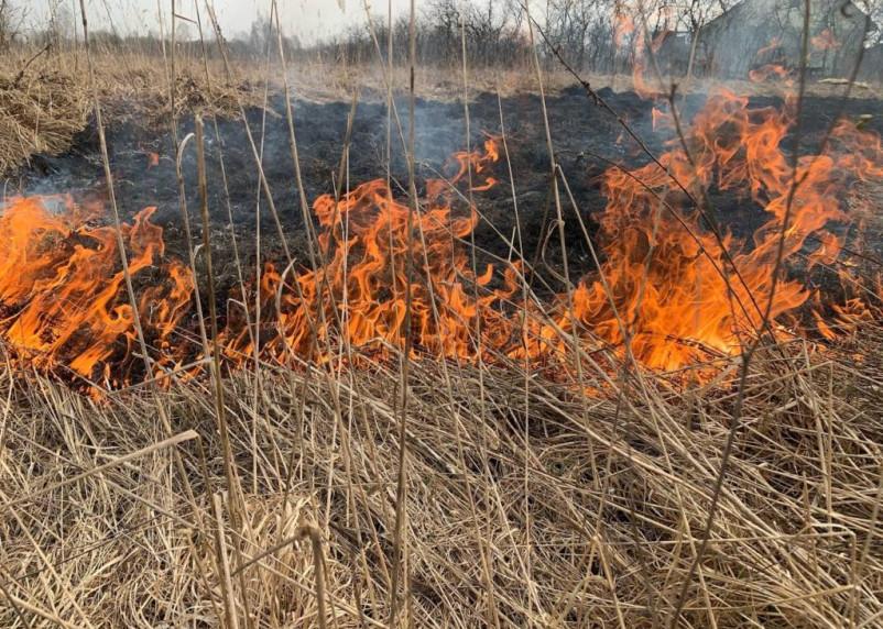 В Смоленской области снова запретили разжигать костры