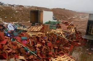 Аминь. На смоленском полигоне похоронили 47 тонн томатов и груш