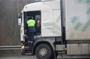 В Смоленской области проходят «сплошные проверки» водителей