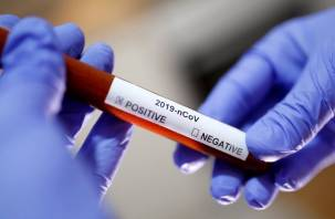 Ученые составили прогноз по коронавирусу на ближайшие 10 лет