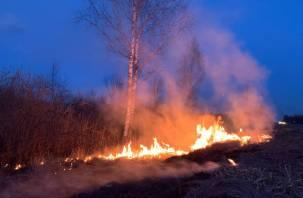 В Смоленской области ввели режим повышенной готовности к пожарам
