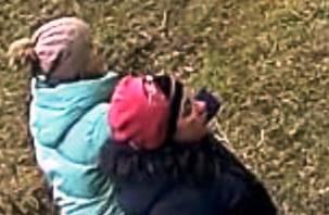 В Смоленске разыскивают мошенниц, которые грабят стариков