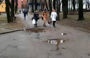 Направления из луж и грязи в самом центре Смоленска