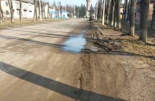 Пылевой пилинг и грязевые ванны в подарок. Жители Дорогобужа устроили троллинг чиновникам