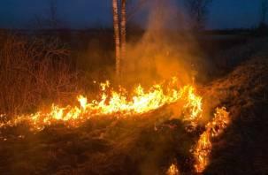В Смоленской области готовятся к пожароопасному сезону