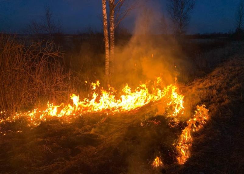 Палы травы на Смоленщине. Выгорел небольшой город